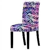 Wyxy Juego de 6 Fundas para sillas de Comedor, Color Cian, Violeta, Azul, Rosa, elásticas, extraíbles, fáciles de Lavar, Fundas para sillas de Comedor, Fundas de Licra para sillas de Comedor, Fun